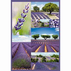 Sticker Lavendel