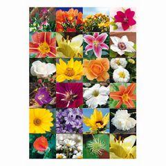 Sticker Blumenreich