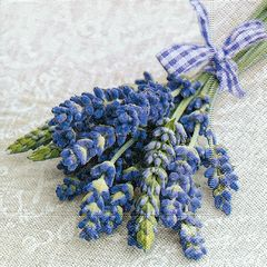 Serviette Provence